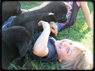 DOG DAYS OF SUMMER FOR BLOG ENTRY