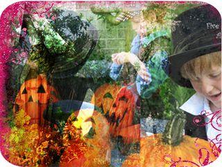 Pumpkin thieves